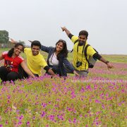 kaas valley of flowers maharashtra
