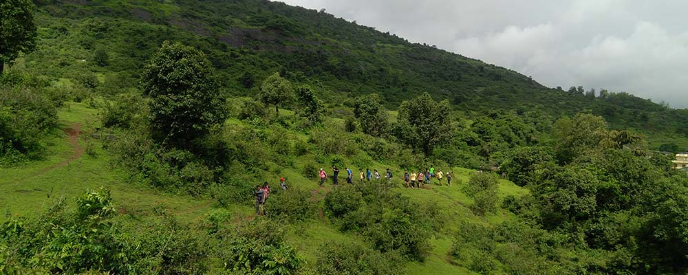 easy Monsoon Treks near Pune