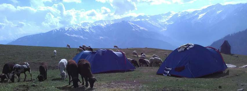Trekking the Deo Tibba Base Camp